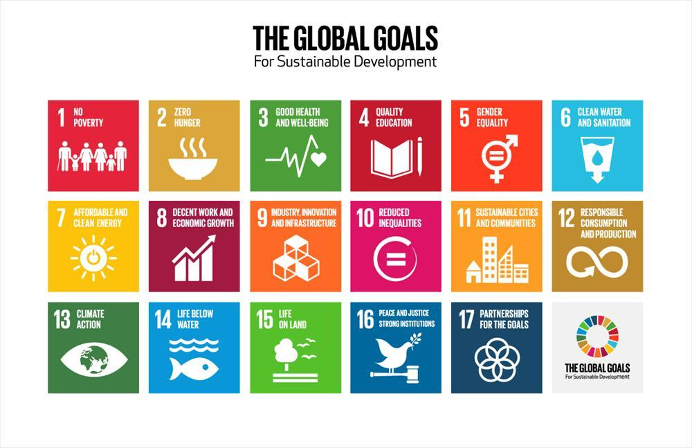 Social Development Goals grid